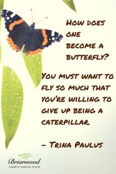 butterfly-trina paulus