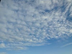 cloud-Heart-in-Formationwordpress