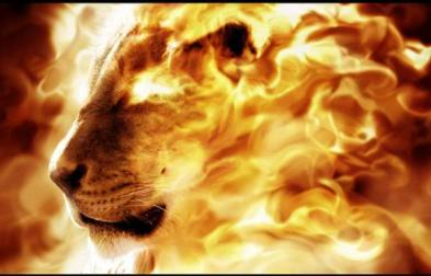Lion-consuming-fire