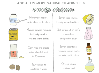 Natural Cleaning tips-Ananasa