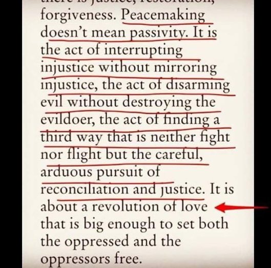 peacemaking-is-not-passivity-revolution-of-love-setting-oppressed-and-oppressors-free