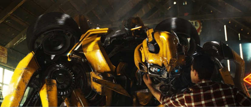 Bumblebee and Samwitwicky