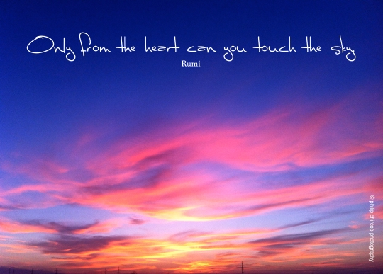 only from the heart can you touch the sky - Rumi Quote
