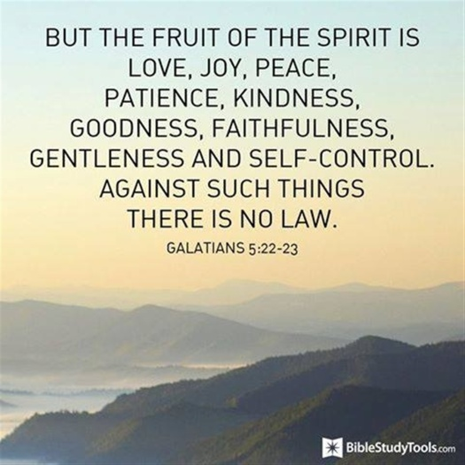 Fruit of the Spirit - against such things there is no law