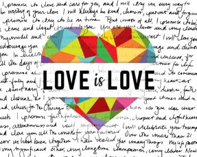love-is-love-Marriage equality- Ipromise to love and cherish