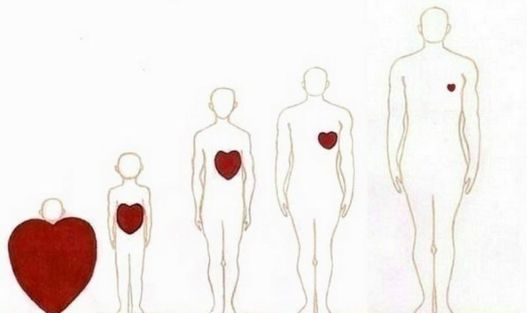 child heart - adult heart - as we grow let our compassion grow too